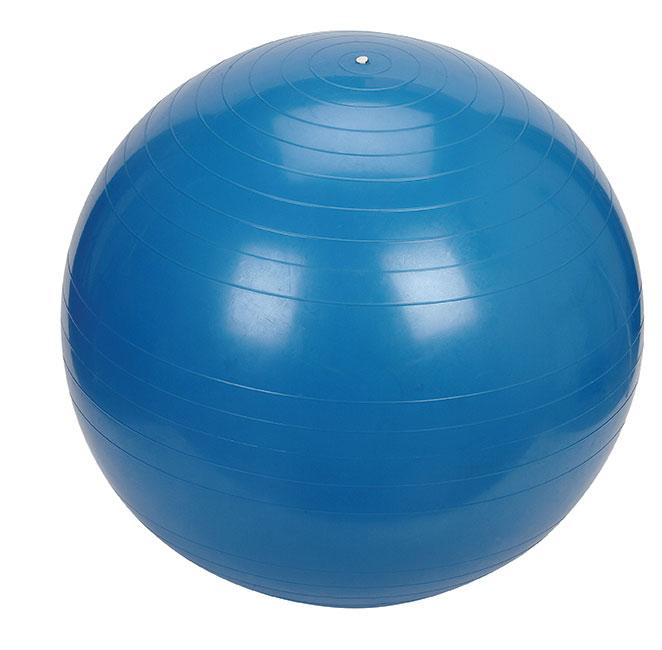 55cm exercise ball abdominal ball therapy ball pilates ball