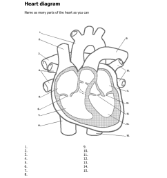 heart diagram related keywords suggestions heart diagram long [ 1275 x 1650 Pixel ]