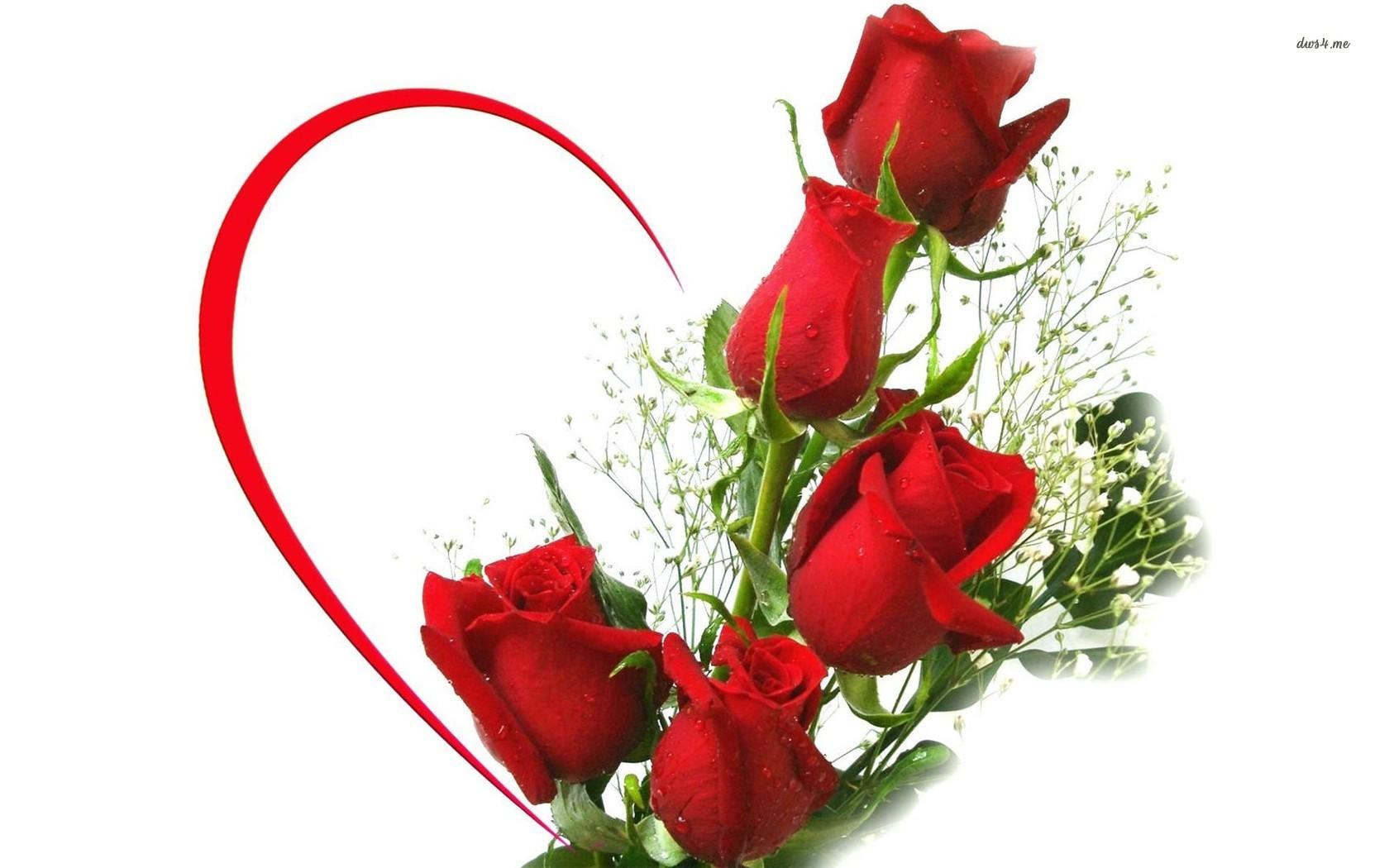 free rose image download
