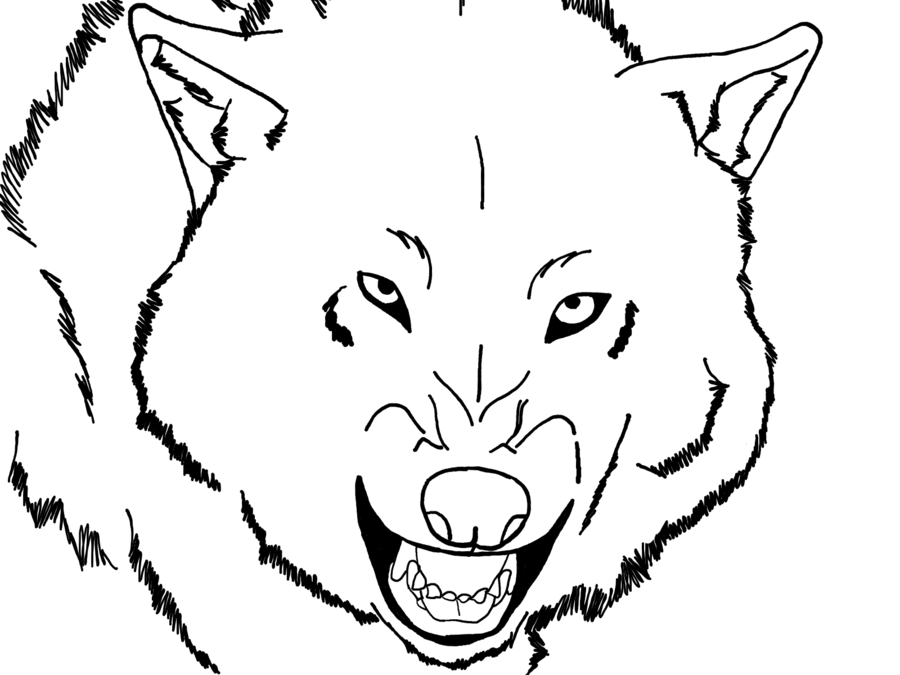 Free Simple Wolf Drawings Download Free Clip Art Free