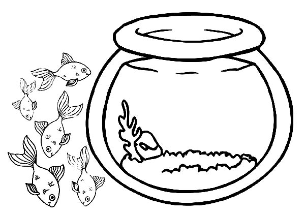 fish bowl coloring pages : Printable Coloring Sheet ~ Anbu