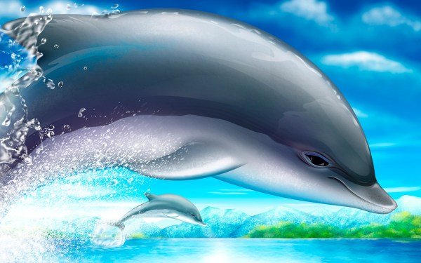 Cool Free Moving Dolphin Screensavers