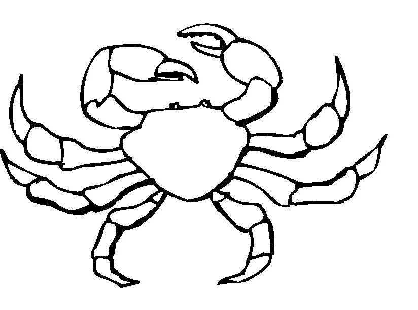 Free Hermit Crab Clipart, Download Free Clip Art, Free