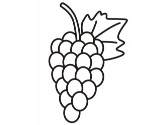Simple Grapes Outline