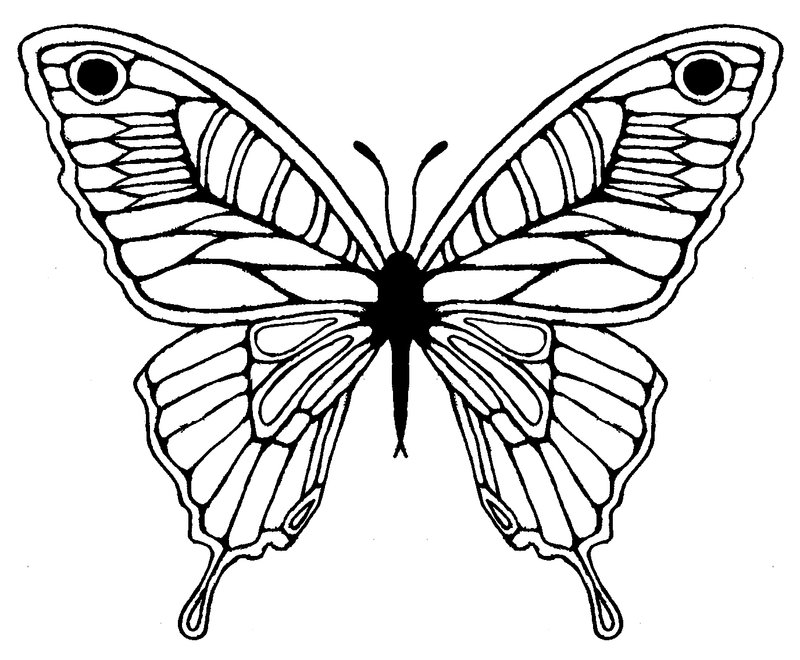 Page Butterfly Geometric Coloring