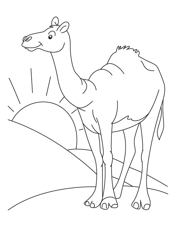 Free Drawing Of Animal Camel In Desert, Download Free Clip