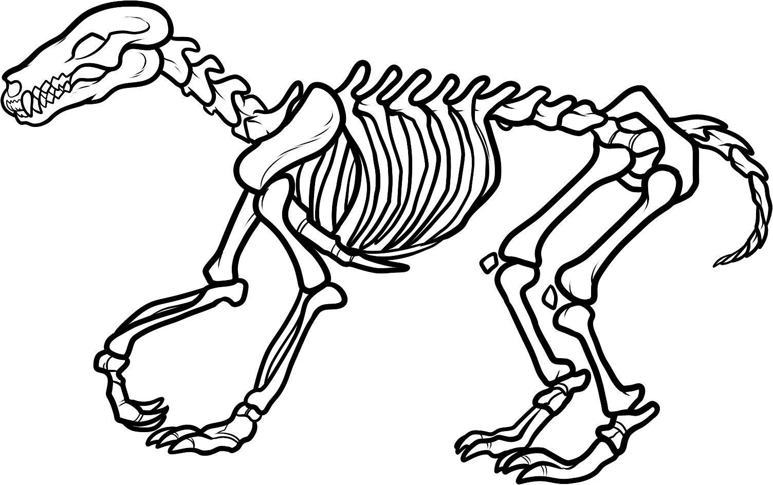 Dinosaur Bones Clipart Clipart Library
