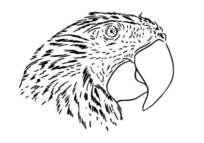 Free Line Drawing Of Animals, Download Free Clip Art, Free