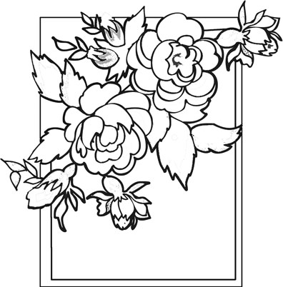 Free Sampaguita Drawing, Download Free Clip Art, Free Clip