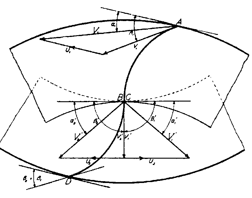 Free Lower Back Skeleton Diagram, Download Free Clip Art