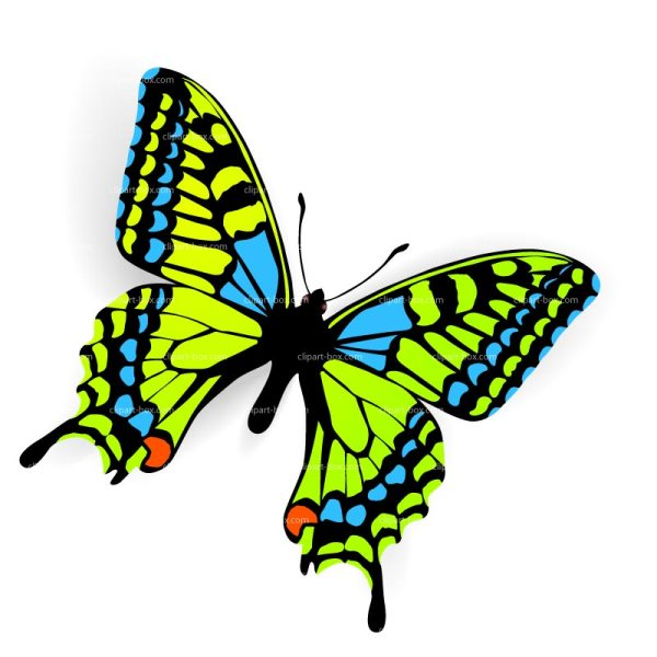free of butterflies