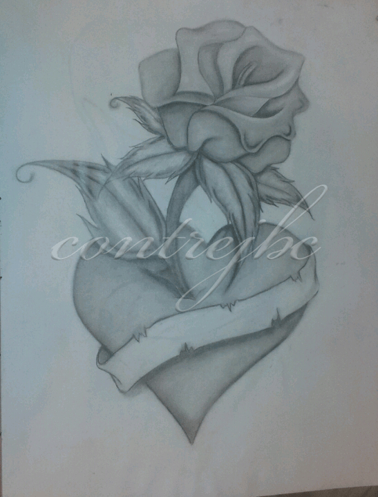 Roses Hearts Drawings : roses, hearts, drawings, Ribbons, Drawings,, Download, Clipart, Library