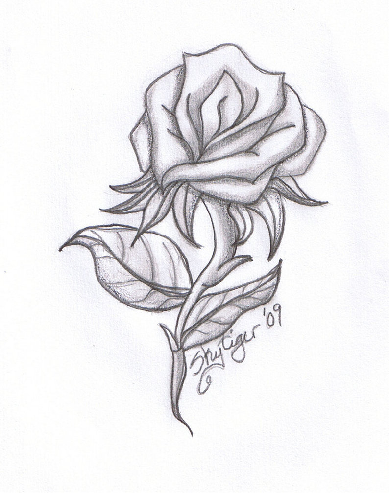 Free Roses Drawings With Hearts, Download Free Roses
