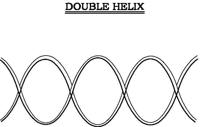 Photo : Double Helix Definition Of Double Helix By Merriam