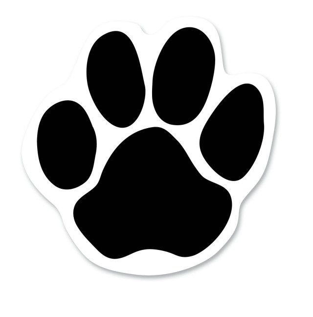 Free Bear Paw Outline, Download Free Bear Paw Outline png images