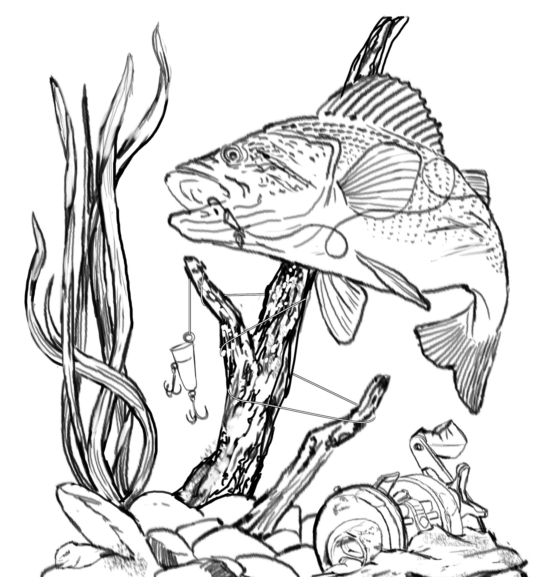 Free Fish Line Drawings Download Free Clip Art Free Clip