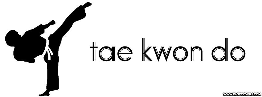 Free Taekwondo, Download Free Clip Art, Free Clip Art on