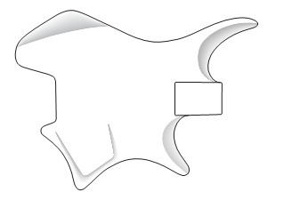 Beaufiful Electric Guitar Body Templates Images. Fender