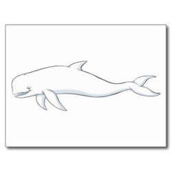 whale beluga cartoon cute clipart cliparts card templates library clip postcards attribution forget link don
