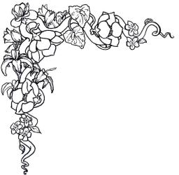 border flower simple designs clipart draw clip line library