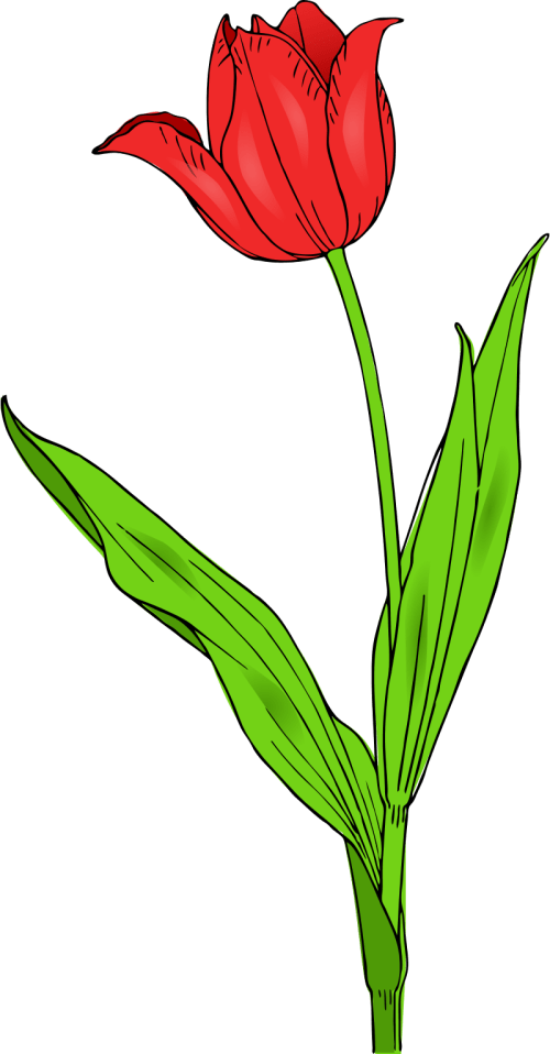small resolution of spring flower clip art school clipart