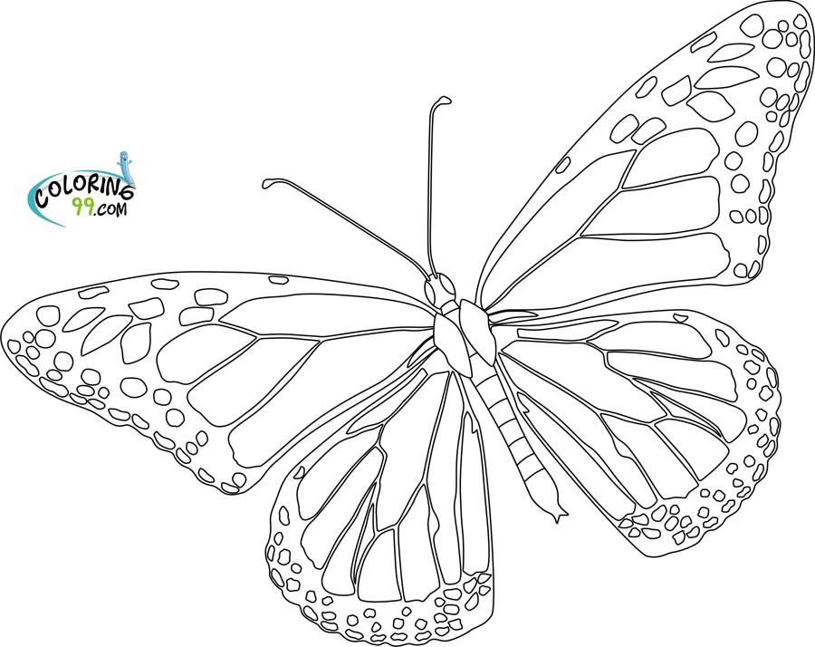 Free Monarch Butterfly Template, Download Free Clip Art, Free Clip ...