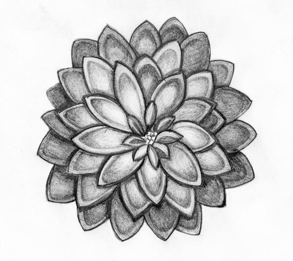 free drawing of flowers