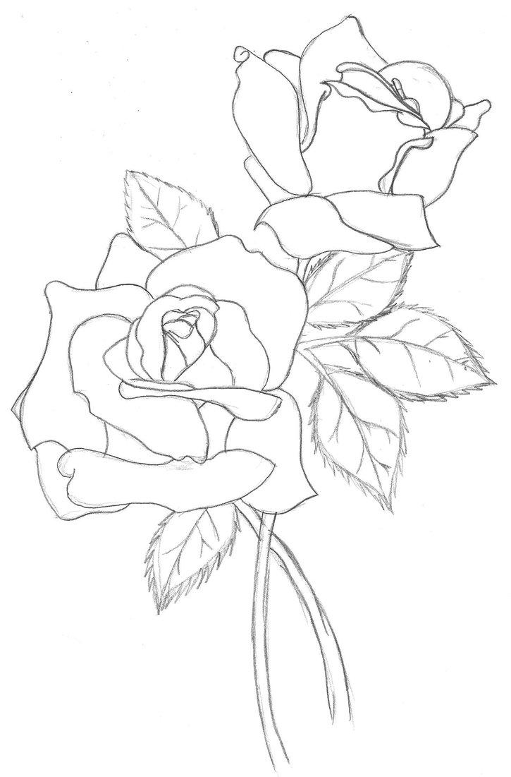 Free Rose Outline, Download Free Clip Art, Free Clip Art
