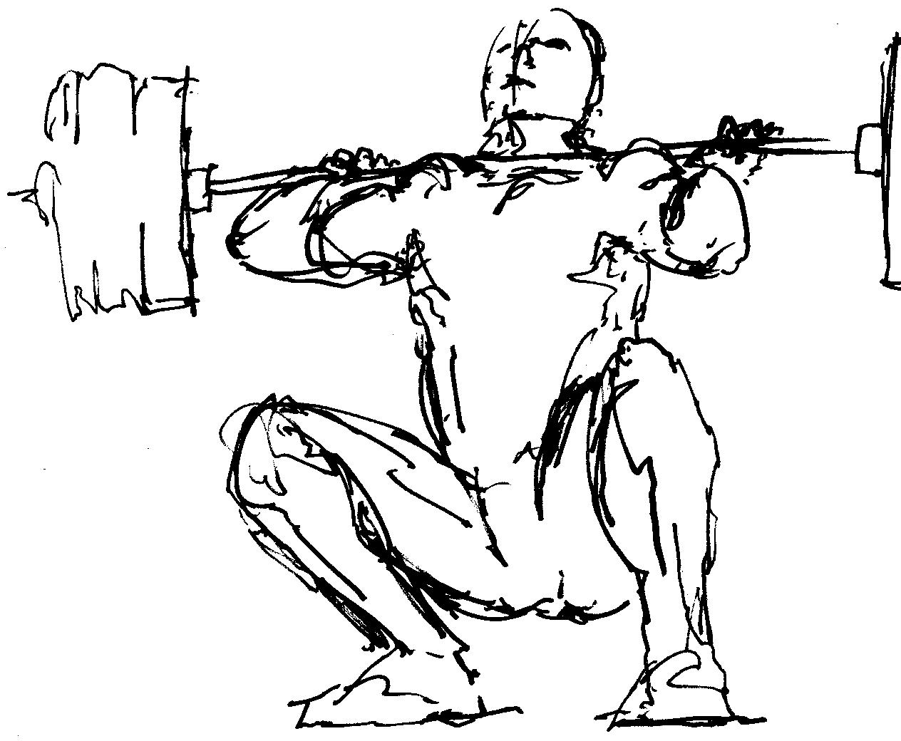 Free Weightlifting Art Download Free Clip Art Free Clip