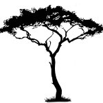 Free How To Draw Tree Silhouette Download Free Clip Art Free Clip Art On Clipart Library