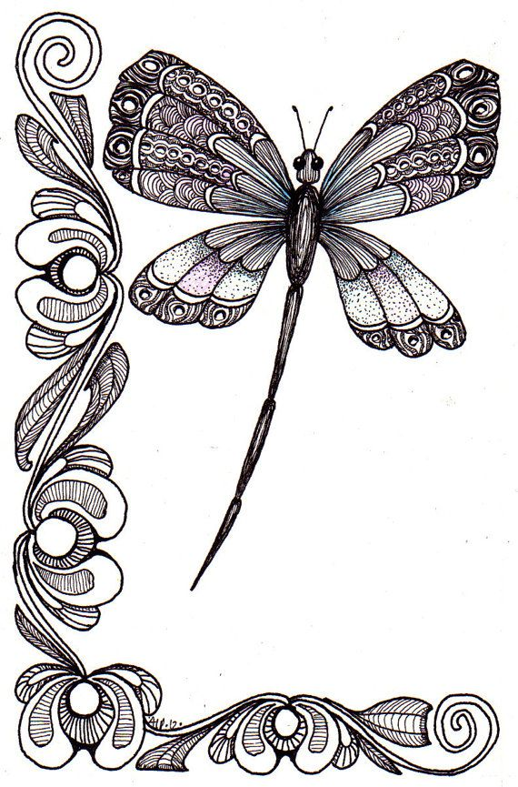 free dragonfly illustrations