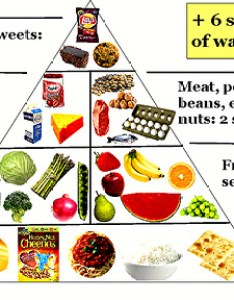 Balanced diet plan viralnova also free chart download clip art on rh clipart library