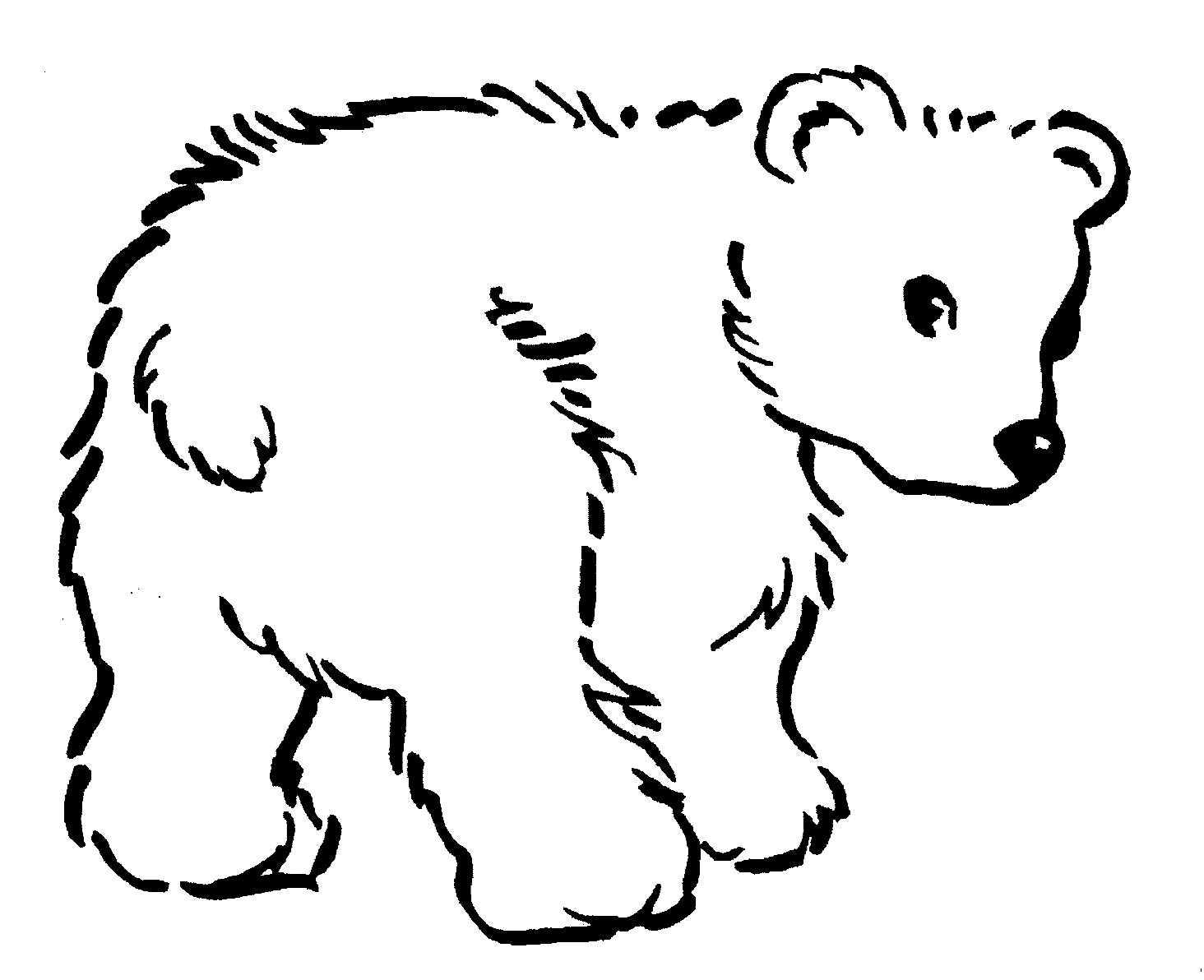 Images For Black Bear Drawing Outline