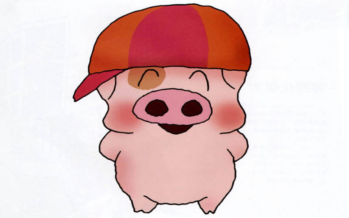 hight resolution of pig images cartoon