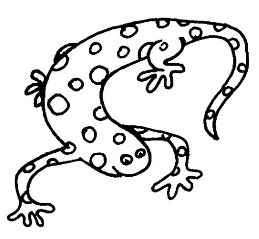 Free Pictures Of Reptiles For Kids, Download Free Clip Art