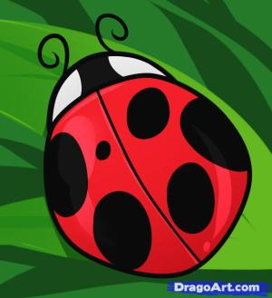 ladybug draw drawing lady step bug ladybugs painting bird clipart bugs animals dragoart cliparts library insect clip something hellokids rocks