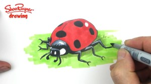 ladybug drawing ladybird draw clipart drawings clip paintingvalley library shoo rayner