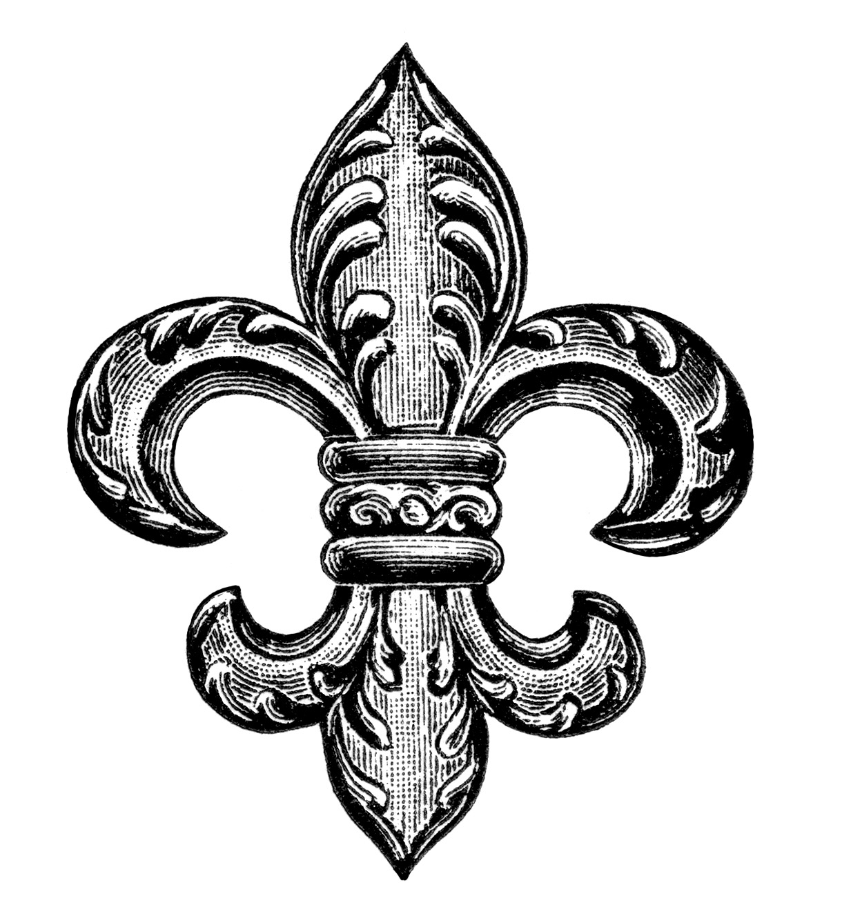 hight resolution of fleur de lis gif photograph massimages