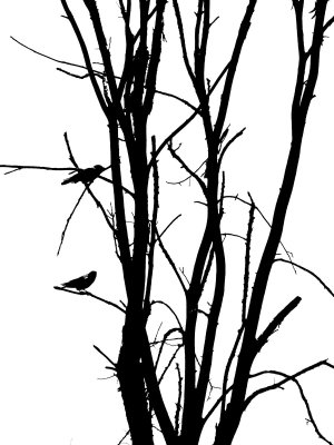 silhouette tree bird simple birds clipart drawing deviantart cliparts branch clip getdrawings library outline becuo flying favorites don