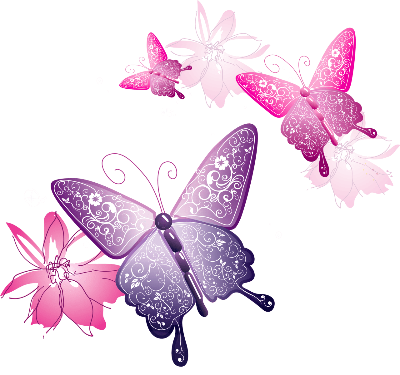 hight resolution of transparent butterfly decorative clipart