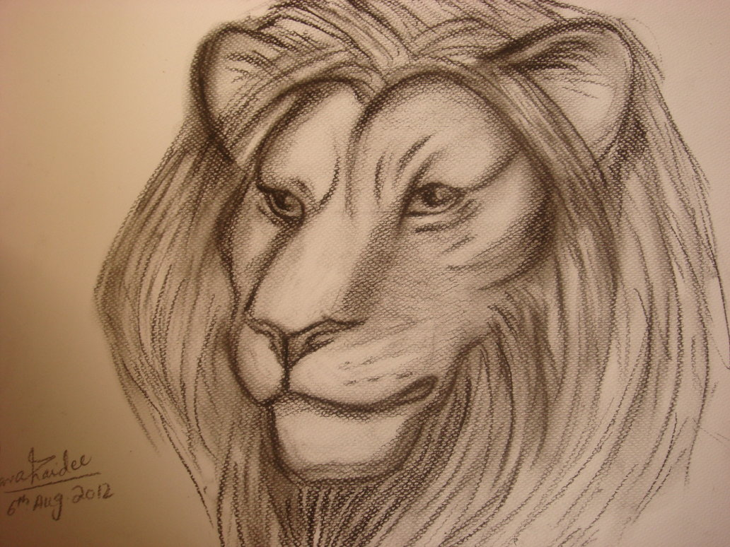 Lion Face With Crown Drawing