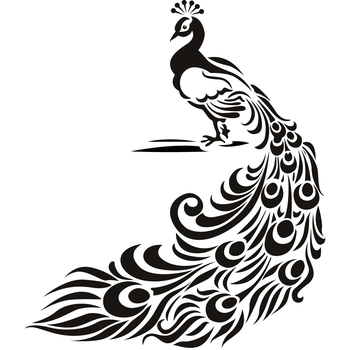 Free Peacock Drawing Download Free Clip Art Free Clip