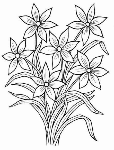 free flowers drawing for