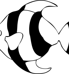 fish line drawing clipart library [ 3333 x 2529 Pixel ]