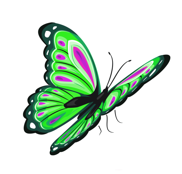 Pink and Green Butterfly Clip Art