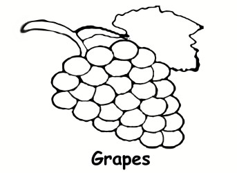 Free Grape Outline Download Free Clip Art Free Clip Art on Clipart Library