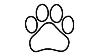 Pix For Dog Paw Outline Image