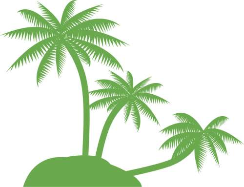 small resolution of palm tree clip art black and white clipart library free clipart