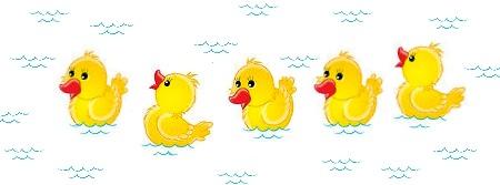 ducks in pool - prestige