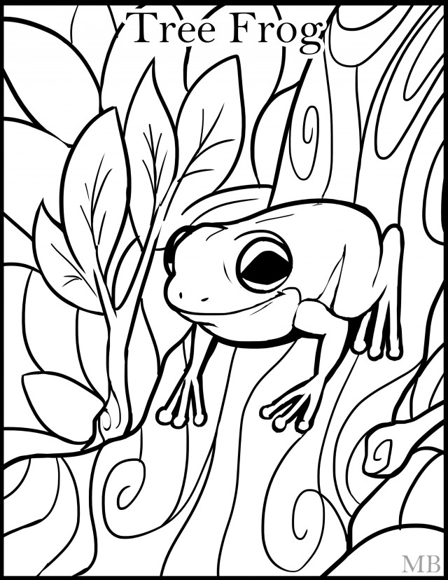 Free Frog Images For Kids, Download Free Clip Art, Free